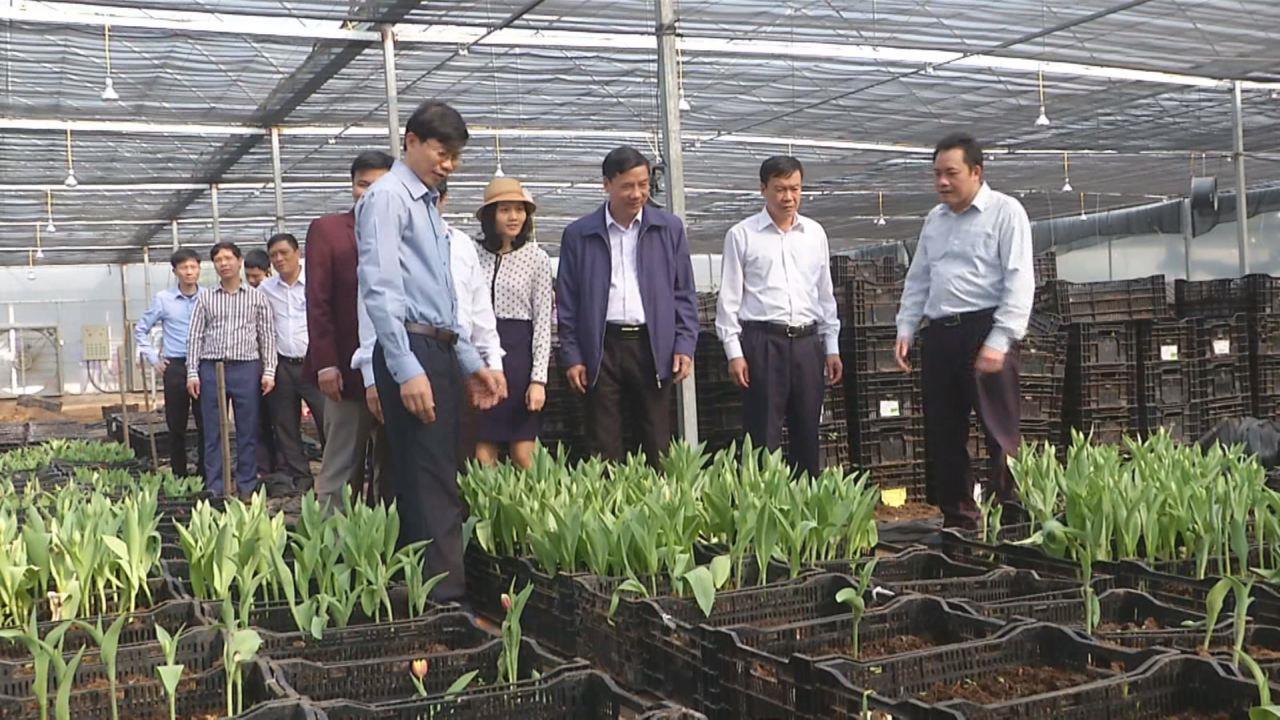 Đồng chí Nguyễn Hữu Quất thăm mô hình công nghệ cao tại xã Việt Đoàn