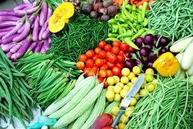 Khai trương cửa hàng bán rau an toàn tại Gia Bình
