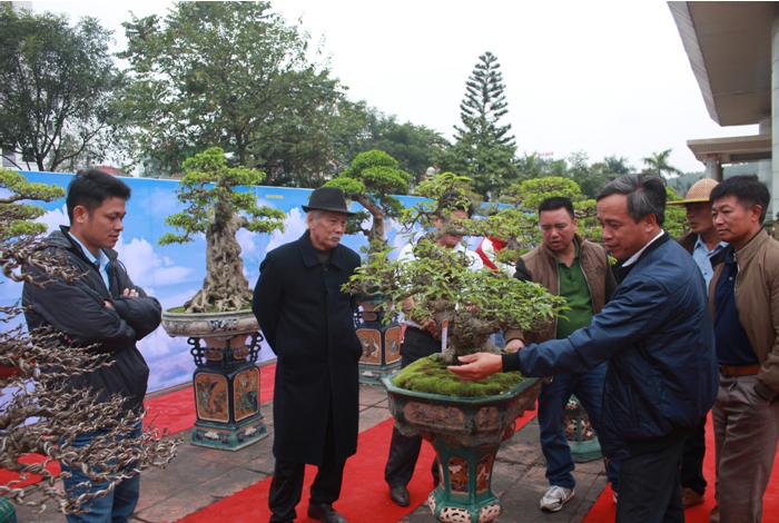 Ấn tượng từ Hội chợ triển lãm Sinh vật cảnh Bắc Ninh năm 2018