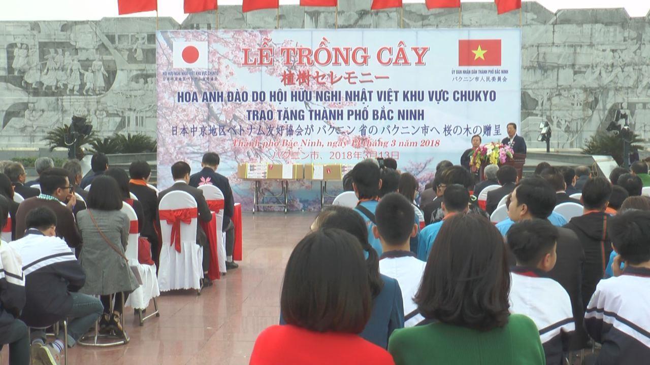 Lễ trồng cây hoa Anh đào do Hội hữu nghị Nhật – Việt vùng Chukyo trao tặng thành phố Bắc Ninh