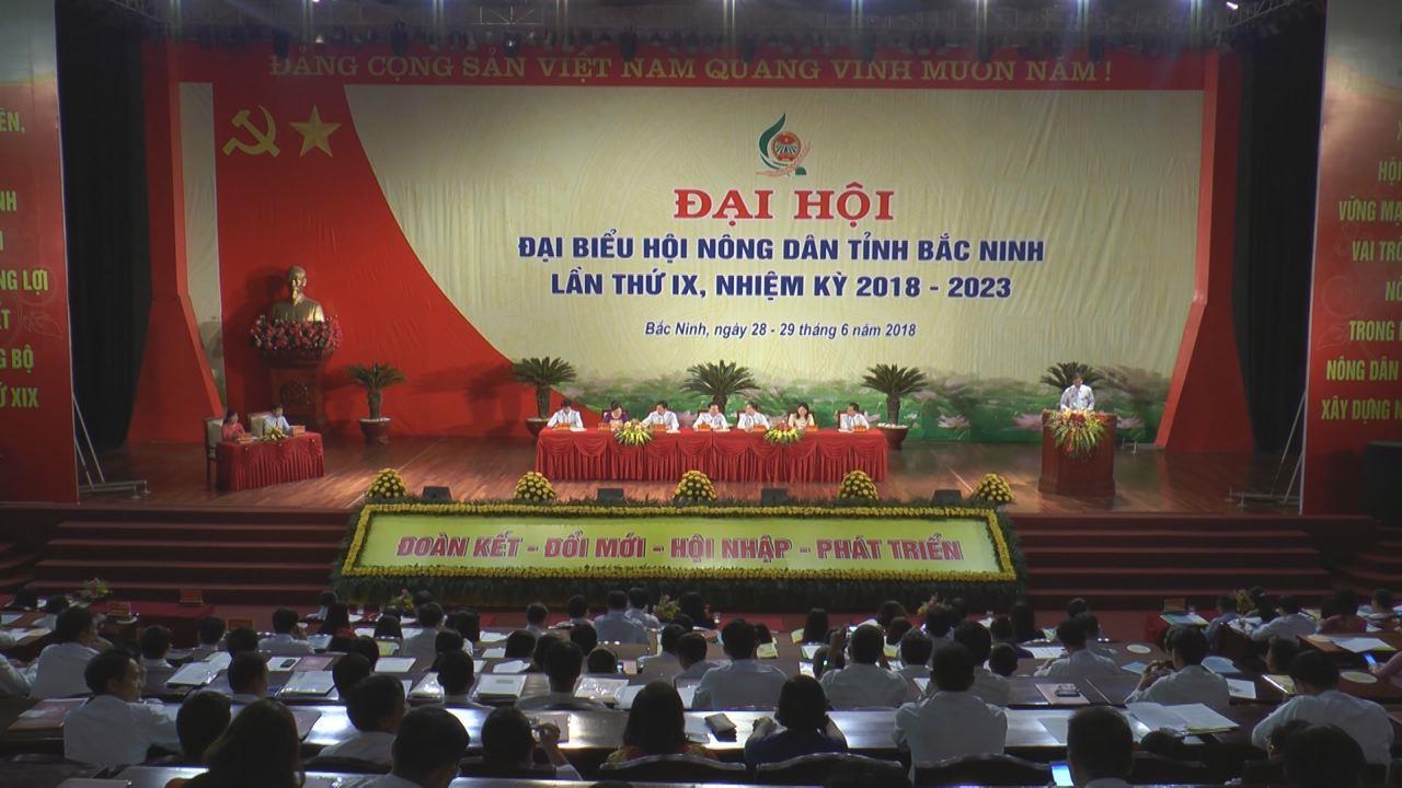 Ngày làm việc thứ nhất Đại hội đại biểu Hội Nông dân tỉnh Bắc Ninh lần thứ IX