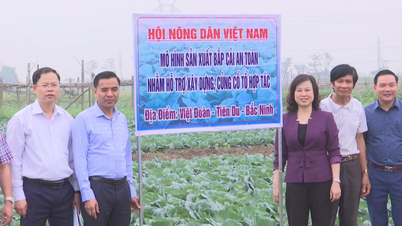 Phó Bí thư Tỉnh ủy Đào Hồng Lan thăm một số trang trại tiêu biểu