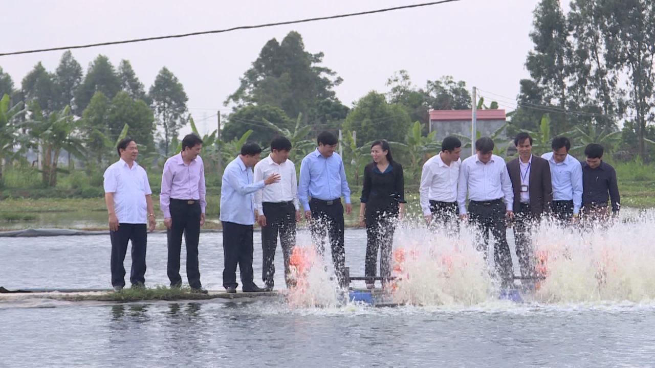 Bí thư Tỉnh ủy Nguyễn Nhân Chiến thăm mô hình kinh tế trang trại