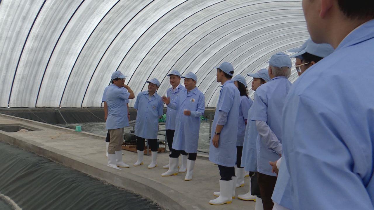 Lãnh đạo tỉnh thăm Nhà máy điện gió  và khu nuôi tôm công nghệ cao tại Bạc Liêu