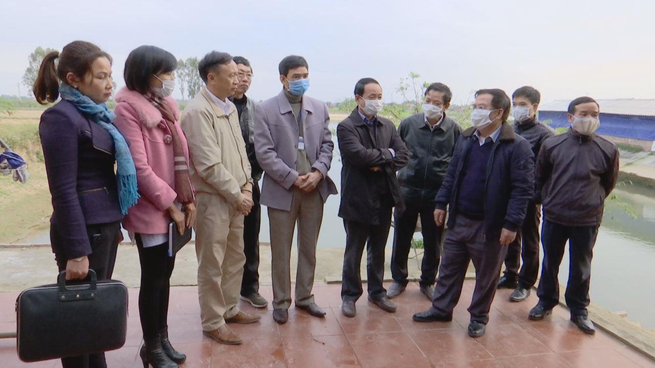 Sở Nông nghiệp và Phát triển nông thôn kiểm tra công tác phòng chống dịch bệnh và triển khai Tháng vệ sinh, khử trùng, tiêu độc