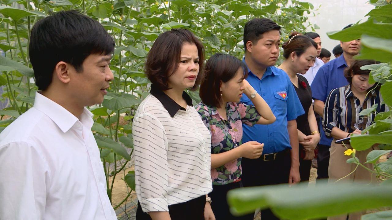 Giám sát công tác bảo vệ môi trường theo Nghị quyết HĐND tỉnh