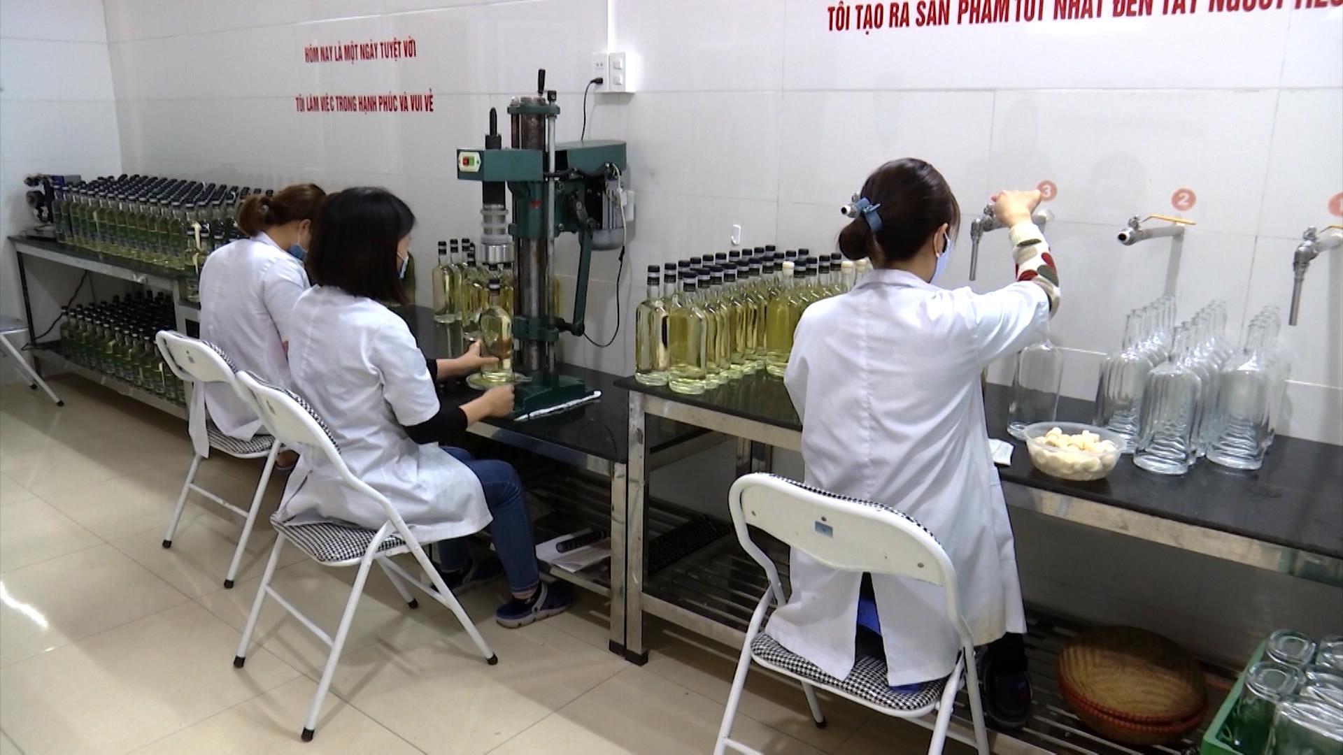 Xây dựng thương hiệu nâng cao sức cạnh tranh cho sản phẩm nông nghiệp và TTCN