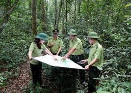 Bắc Ninh: Duy trì ổn định diện tích hơn 472 ha rừng phòng hộ.