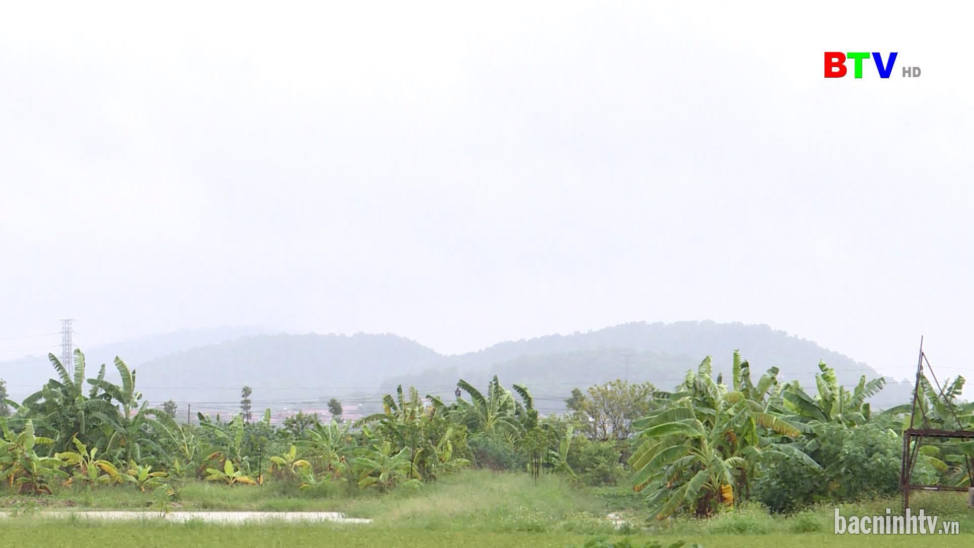 Chủ động ứng phó với mưa, lũ do ảnh hưởng của hoàn lưu bão số 7
